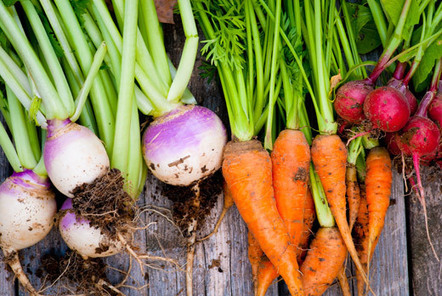 Top 6 Alkaline Foods To Eat Every Day For Vibrant Health   citation   Scoop.it