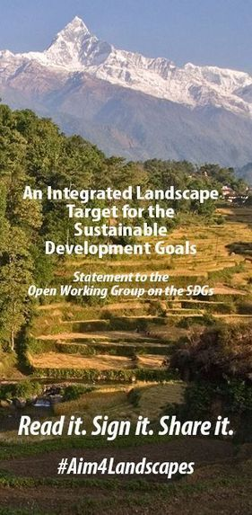 Action and Advocacy: An Integrated Landscape Target for the Sustainable Development Goals | Friday Links | Scoop.it