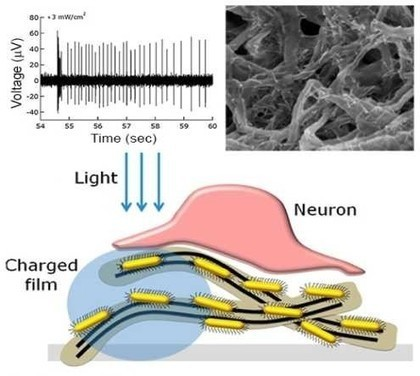 Nanotube film could replace defective retinas | FUTUROLOGIE INNOVATION | Scoop.it