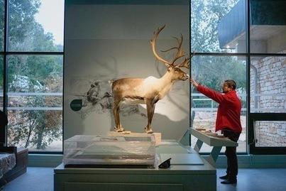 FRANCE : A Orgnac, une porte ouverte sur la préhistoire | World Neolithic | Scoop.it