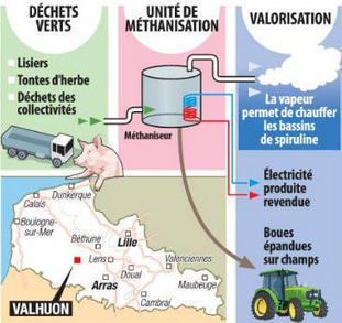 Bientôt de la spiruline à partir des déchets saint-polois ! - La Voix du Nord | spiruline | Scoop.it