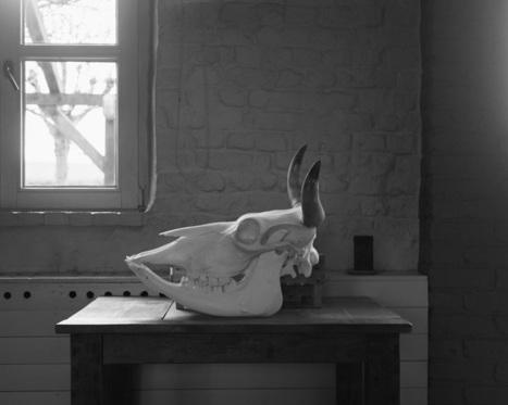Benjamin Schmuck | Alimentation Générale | AG | Art & food | Scoop.it