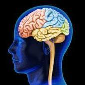 Musical Training Improves Human Brain - TopNews United States | Neuroscience | Scoop.it