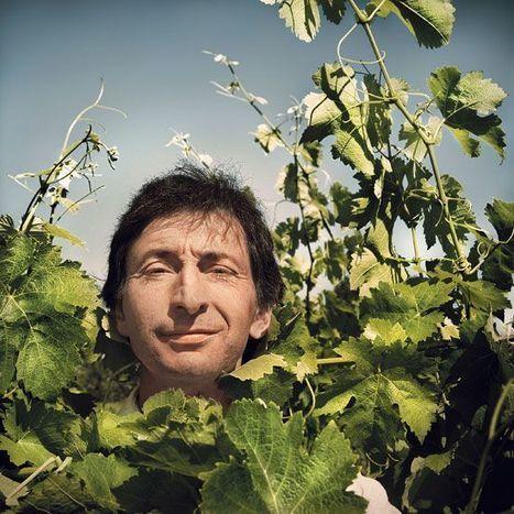 Patrice Lescarret - Un drôle de zigue qui fait des vagues | Vignerons de Terres de Gaillac | Scoop.it