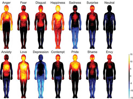 Mapping Emotions On The Body: Love Makes Us Warm All Over | Social Foraging | Scoop.it
