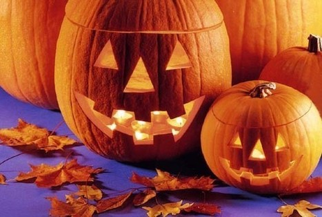 Guide to Halloween 2014 events in Hull and East Riding - Hull Daily Mail | My Child Learns UK | Scoop.it