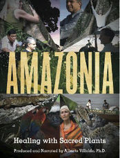 Amazonia: Healing With Sacred Plants   Nature and Culture   Scoop.it