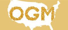 OGM : le ministère de l'Agriculture américain dresse un bilan ... - Actu-environnement.com | Abeilles, intoxications et informations | Scoop.it