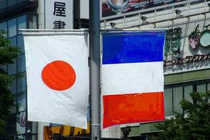 Le Thésame étend ses compétences au Japon   Des robots et des drones   Scoop.it