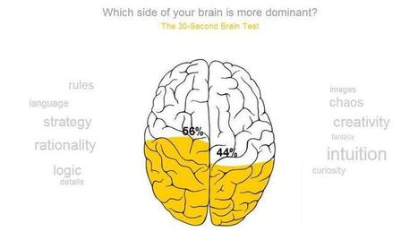 Right-brained? Left-brained? Take the brain test! | Psykologia | Scoop.it