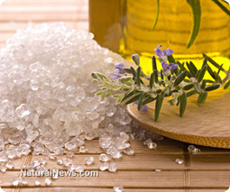Lavender oil is for healing - Natural News | Lavender | Scoop.it