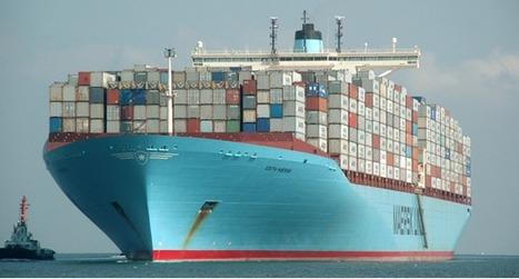 Comment les espèces invasives débarquent en masse dans les ports de la planète | Ambiante | Scoop.it