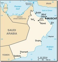 Avian Flu Diary: Oman Reports Second MERS-CoV Fatality | MERS-CoV | Scoop.it