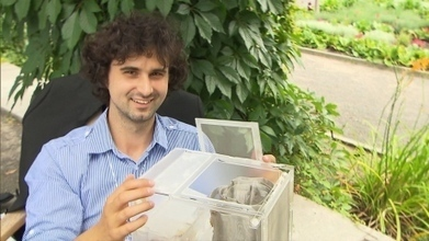 McGill student develops at-home cricket farms | Entomophagy: Edible Insects and the Future of Food | Scoop.it