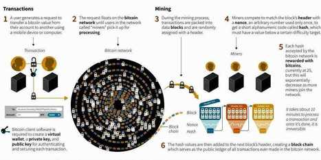 The Bitcoin Economy [INFOGRAPHIC] | Economia y sistemas complejos | Scoop.it