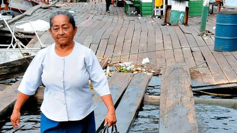 How to protect the Amazon | Geoflorestas | Scoop.it