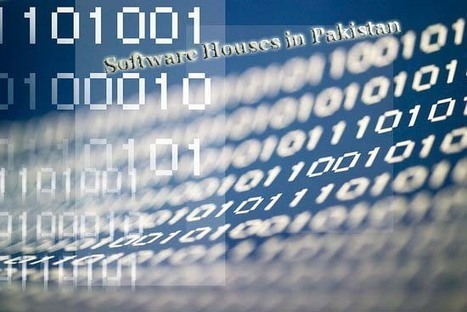 Reaching Out For the Services of Software Experts –Targeting Business Growth | Software Houses | Scoop.it