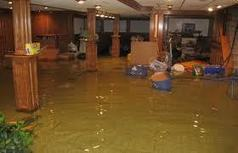 Water Damage Questions Virginia Beach Water Damage Questions Virgi | Beach And Beyond Carpet Cleaning | Scoop.it