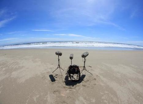 Music of Sound » Field Recording | DESARTSONNANTS - CRÉATION SONORE ET ENVIRONNEMENT - ENVIRONMENTAL SOUND ART - PAYSAGES ET ECOLOGIE SONORE | Scoop.it