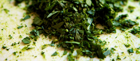 Tarragon Toxicity? | NutritionFacts.org | The Basic Life | Scoop.it