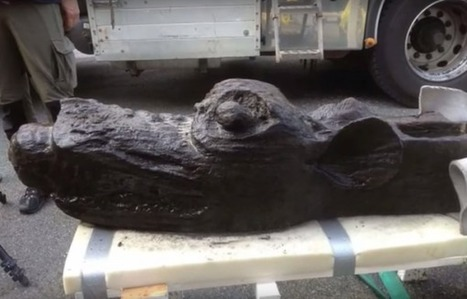'Sea Monster' Figurehead of 15th Century Ship Found Underwater South of Sweden - University Herald | ScubaObsessed | Scoop.it