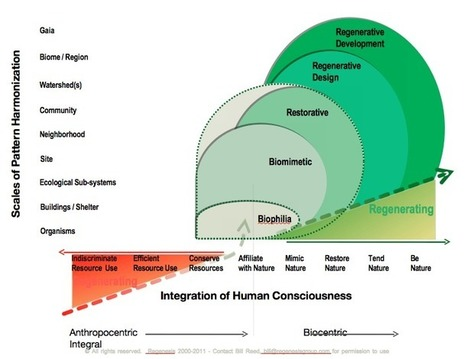 Stages in Human Regenerative Consciousness and Activity | P2P Foundation | Peer2Politics | Scoop.it