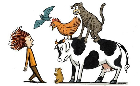 Why Cows and Bats Are Much More Deadly Than Tigers and Sharks | this curious life | Scoop.it
