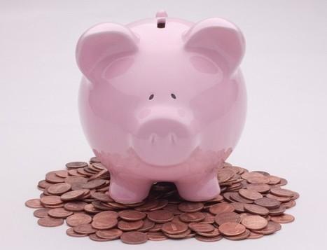 Le microcrédit professionnel se porte bien, merci ! - Le Blog iScriba | micro-crédit | Scoop.it