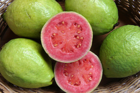 Guava: the Tropical Fruit That Can Protect Your Heart, Lower Your Blood Pressure and Much More! | Fruit | Scoop.it