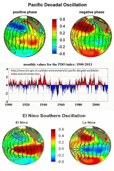 Reexamining El Niño and cholera in Peru: A climate affairs approach - Part 2 | Medical GIS Guide | Scoop.it