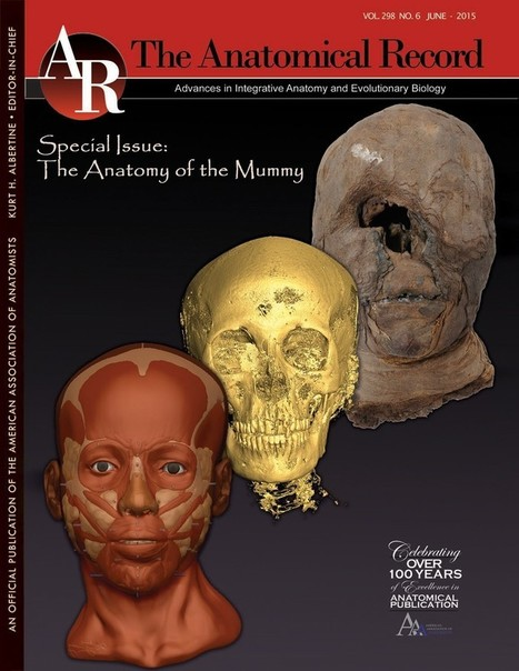 Ancient mummies meet modern medicine | Past Horizons | Kiosque du monde : A la une | Scoop.it