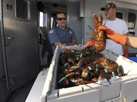 Seafood fraud cases plummet as NOAA cuts investigators - Kennebec Journal & Morning Sentinel | Commercial fishing - legal issues | Scoop.it