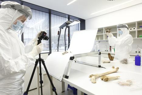 Poblaciones diversas del Neolítico descubrieron la agricultura de manera simultánea | Centro de Estudios Artísticos Elba | Scoop.it