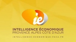 L'Intelligence économique en pratique : Comment investir ? Quelle méthodologie utiliser ? | Le blog de l'information stratégique | Personal Branding and Professional networks | Scoop.it