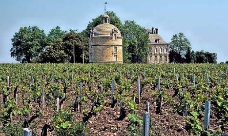 Vins de Bordeaux | Oeno-digital | Scoop.it