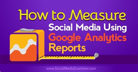 How to Measure Social Media Using Google Analytics Reports : Social Media Examiner | The Twinkie Awards | Scoop.it