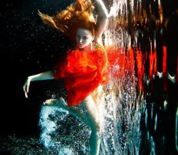 showcase of beautiful underwater photography | PhotoInk | Photography Today | Scoop.it