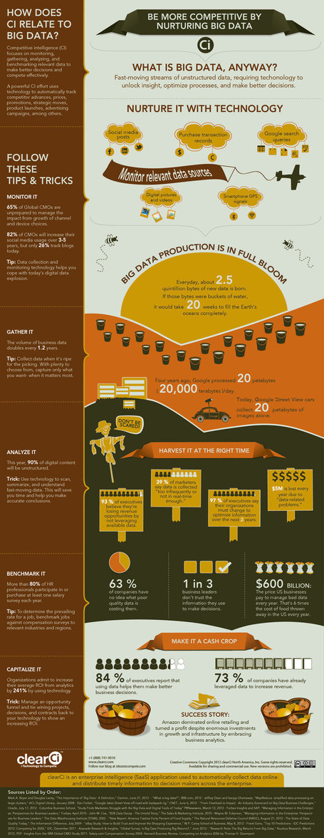 INFOGRAPHIC: How to Dominate Big Data & Beat the Competition with Technology | curating your interests | Scoop.it