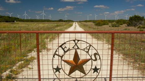Wind power is so cheap in Texas some companies give it away: did you expect oil rich Texas to Lead in Sustainable Energy? | Business as an Agent of World Benefit | Scoop.it