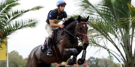Équitation : Astier Nicolas remporte le concours complet international de Pau | Cheval et sport | Scoop.it