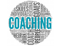Adaptive Action Coaching: Establishing Fundamentals to Build Capacity | Network Leadership | Scoop.it