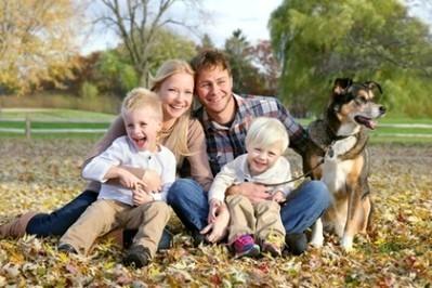 L'assurance des chiens, chats et autres animaux de compagnie | Courtage d'assurances tous risques | Scoop.it