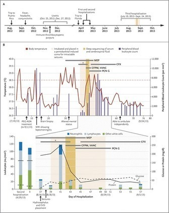 Actionable Diagnosis of Neuroleptospirosis by Next-Generation Sequencing | Amazing Science | Scoop.it