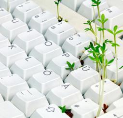 IT et énergie : quels enjeux? - le blog usages d'entreprise | Le Microbloging en 3.0 ! | Scoop.it
