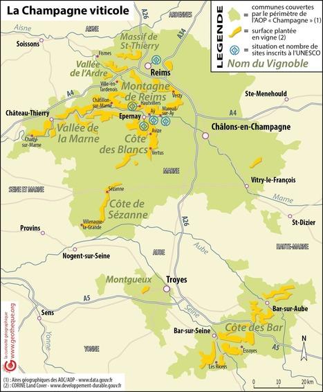 La Champagne viticole | Géographie : les dernières nouvelles de la toile. | Scoop.it