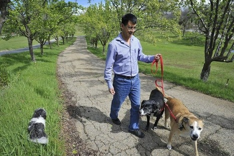 À Berlin, le permis de conduire pour chien est obligatoire | Modern dog training methods and dog behavior | Scoop.it
