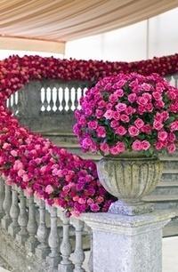 Wedding Flowers - Bouquets   Wedding Flowers in Atlanta   Scoop.it