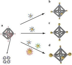 DNA Double Helix Does Double Duty in Assembling Arrays of Nanoparticles   DNA & RNA Research   Scoop.it