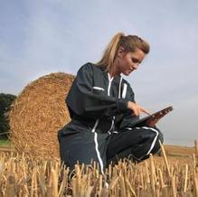 I nuovi agricoltori cercano lavoro sul web. Coldiretti Veneto lancia ... - Il Sole 24 Ore | Social Media e lavoro | Scoop.it