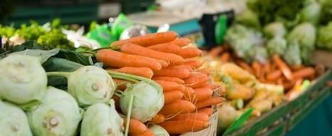 Ten Tips for New Vegans | Paz y bienestar interior para un Mundo Mejor | Scoop.it